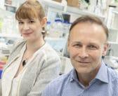 Nya fynd kring hur lungcancer sprider sig