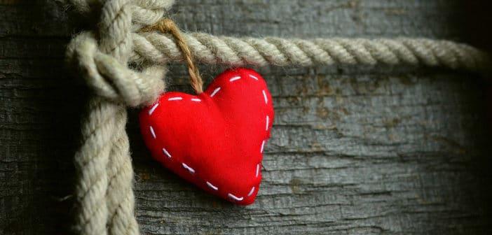 Kan influensavacciner skydda äldre och hjärt-kärlsjuka mot hjärtinfarkt?